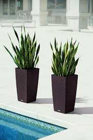 lechuza cubico cottage 30 planter mocha wicker o u t door