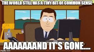 Common Sense Meme - aaaaand its gone meme imgflip