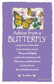 279 best butterfly quotes images on butterflies