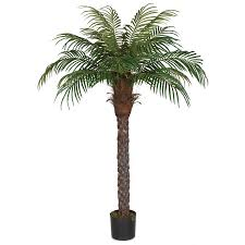 silk phoenix palm phoenix palm trees artificial phoenix palms
