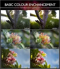 Spring Colors Best Free And Paid Adobe Lightroom Presets Lightroom Fanatic