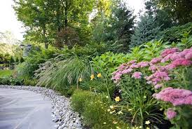 Backyard Plant Ideas Large Yard Landscaping Ideas Backyard Garden Ideas Design