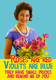 rude valentines cards roses are rude valentines card shits giggles