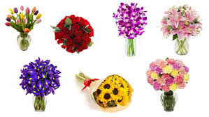 Valentines Day Gifts by Top 10 Most Romantic Flowers For Valentine U0027s Day