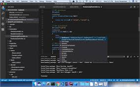 choice cross platform net ides code visual studio