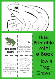 chicken life cycle free printable coloring pages