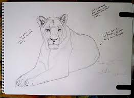 how to paint lion