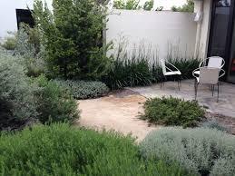sydney native plants melbourne garden design fest comparisons with sydney u2013 janna