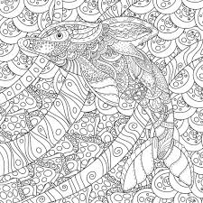 zentangle stylized dolphin anti stress coloring page