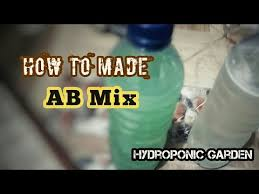 cara pembuatan nutrisi hidroponik ab mix how to made fertilizer ab mix cara membuat pupuk ab mix