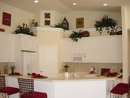 decorating kitchen shelves ideas 12 best plant shelves images on plant shelves shelf