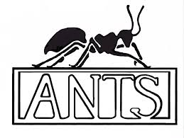 pictures of ants for kids free download clip art free clip art
