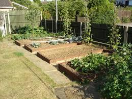 kitchen gardening ideas designing a kitchen garden