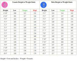 Ideal Bench Press Weight 8 Best Images Of Average Person Height Weight Chart Height And