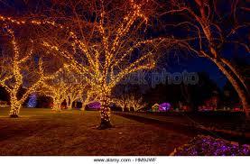 butchart gardens christmas lights stock photos u0026 butchart gardens