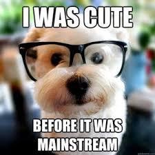 Puppy Memes - puppy memes home facebook