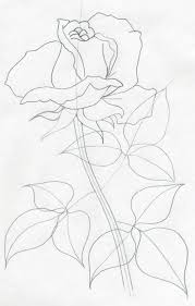 draw a rose quickly simply and easily