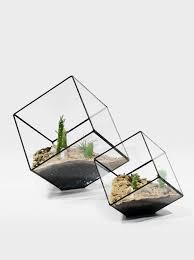 a metal and glass terrarium totally handmade by matthew cleland