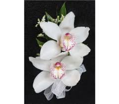 Corsage Prices Send Flowers And Gifts In Philadelphia Pennsylvania Pa Doylestown