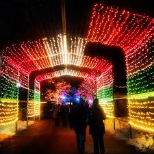 Lights At Lincoln Park Zoo by Christmas Time In Chicago