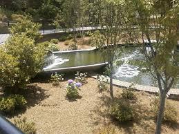 springtime at glencairn gardens picture of glencairn gardens