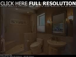 minimalist handicap bathroom design handicap accessible bathroom