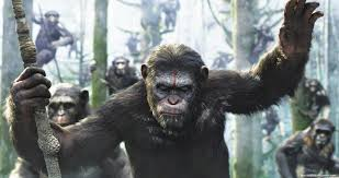 film review dawn of the planet of the apes chillidog movies