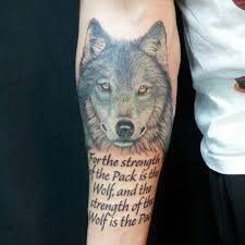 collection of 25 whole arm wonderful wolf