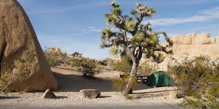 Garden State Rocks by Guided Adventures At Joshua Tree Visit California