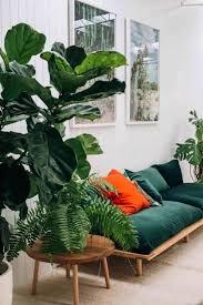 dans le canapé awesome décoration nature dans le salon le canapé en velours