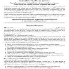 functional executive operating and finance executive resume in functional executive
