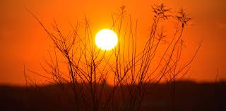 curious what s going to happen to the sun in the future