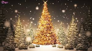 4 Christmas Tree With Lights by Most Beautiful Christmas Tree Wallpaper