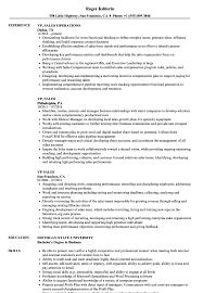 sales resume exles vp sales resume sles velvet