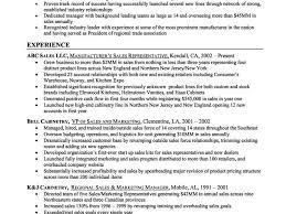 Resume Summaries Resume Summary For Sales Cbshow Co