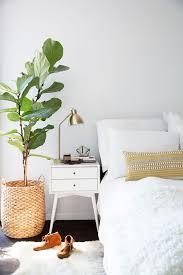 best plants for bedroom plants in bedroom decor coma frique studio d9cd59d1776b