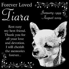 dog memorial personalized chihuahua dog pet memorial 12 x12 engraved black