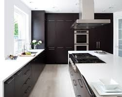 kitchens with dark cabinets dark cabinet kitchen designs inspiring exemplary best dark cabinet