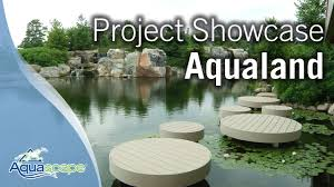 Aquascape Chicago Aquascape Project Showcase Aqualand Youtube