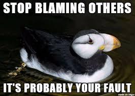 Puffin Meme - unpopular advice puffin meme on imgur