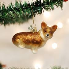 pembroke welsh corgi old world pinterest pembroke welsh