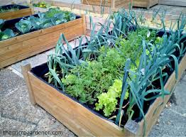 Small Garden Space Ideas Small Garden Design The Micro Gardener