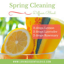 springcleaning cleaning essential oils diffuser blend