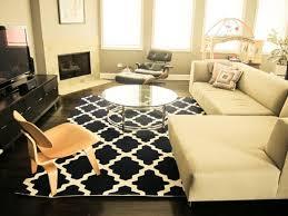 living room square black white 2x3 modern polypropylene trellis