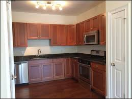 Kitchen Room Wonderful Kitchen Refacing Companies Lowes Kitchen