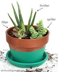 best 25 succulent planters ideas on pinterest succulents
