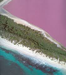 Pink Lake The Pink Lake Hillier Hiking On The Moon