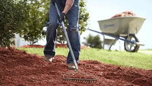 Types Of Hoes For Gardening - garden tools buying guide