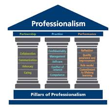 Council Of Architecture Professional Practice Pdf S I No 685 2016 Council In Respect Of The Duties