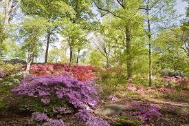 Botanic Garden Bronx by Best Botanical Garden Winners 2016 10best Readers U0027 Choice Travel